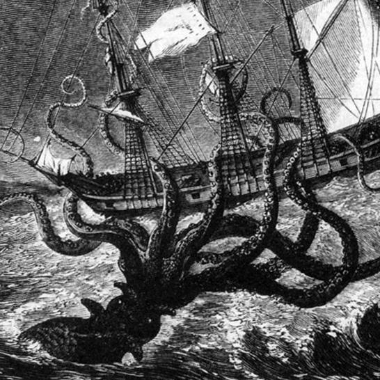 1886年発見の化け物タコの正体 タコ焼きにしたら10万人前?