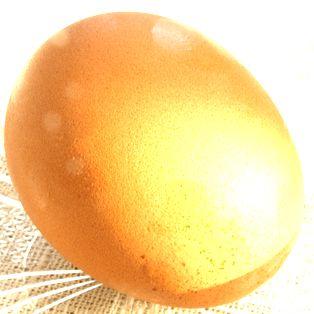 卵アイキャッチ
