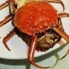海外で日本料理が失笑されてる? 日本人の美的センスが笑われてるゾ