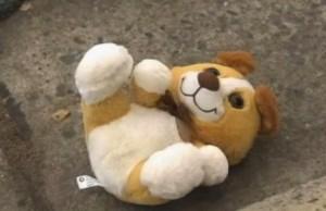 こんな可愛いクマちゃんの中に爆弾が…。