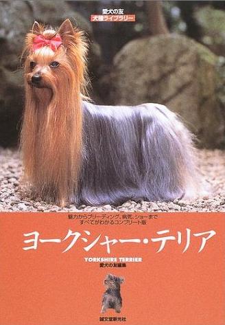 ※画像は『ヨークシャー・テリア (愛犬の友 犬種ライブラリー)』