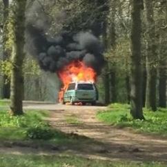 サファリパークで車炎上…外は猛獣! 「詰んだ」観光客の写真がヤバすぎる