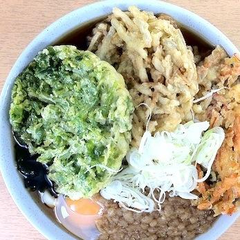 天ぷらのせ放題の立ち食いソバが凄い!! かき揚げ3枚、卵…でも400円台!!