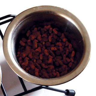 クックパッドには犬猫用料理も投稿されてる! 人間のゴハンより美味しそうでゴクリ…