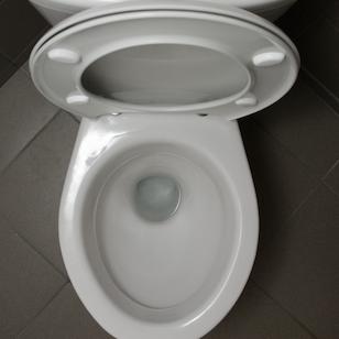 学校トイレを絶対使わない小学生3割 今も「臭い、汚い、暗い」が理由