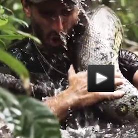 人が大蛇に本当にのまれるドキュメント映画 動物保護団体から「ヘビの虐待だ」と非難殺到