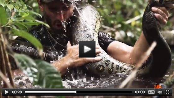 この監督自身が、本物の大蛇アナコンダに喰われることになる。