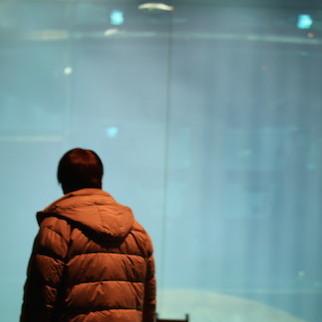 マグロ大量死の水族館が悲惨すぎる状況に 「死の水槽」に老人呆然、泣く子まで…完全フォトレポート