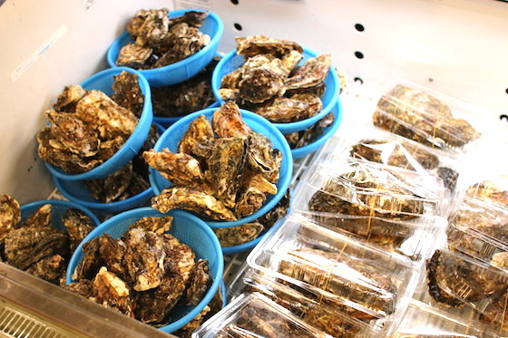 1kg分の牡蠣は圧巻。