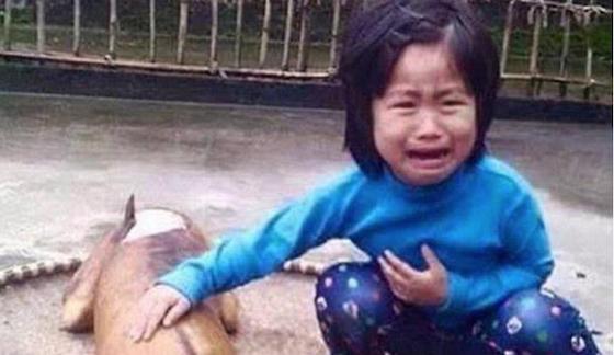 少女の悲痛すぎる表情が…。