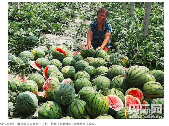中国複数のメディアで報じられた。画像は貼貼より。