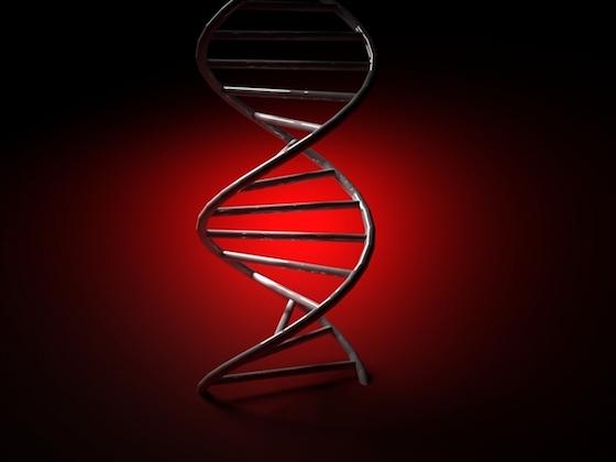 DNAのせいなんです!