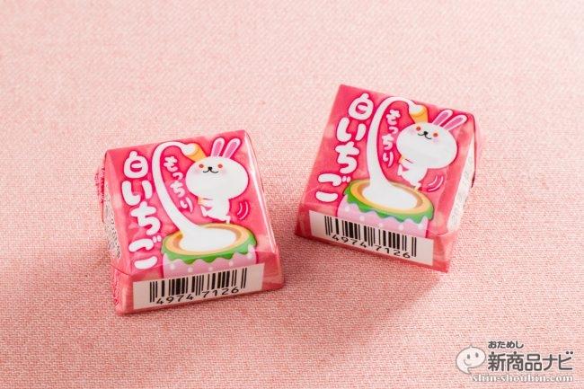 香りが違う!『チロルチョコ<もっちり白いちご>』は、幻の白いイチゴ「雪うさぎ」たっぷり使用したモチモチチョコ!