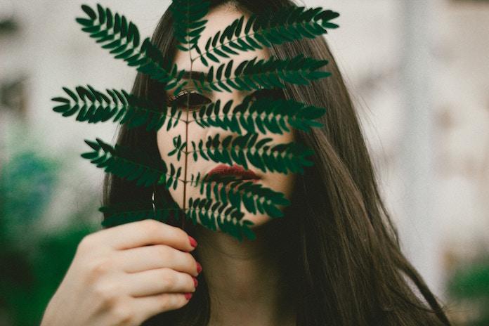 化粧品メーカー・オルビス 業界では珍しい森林整備CSR