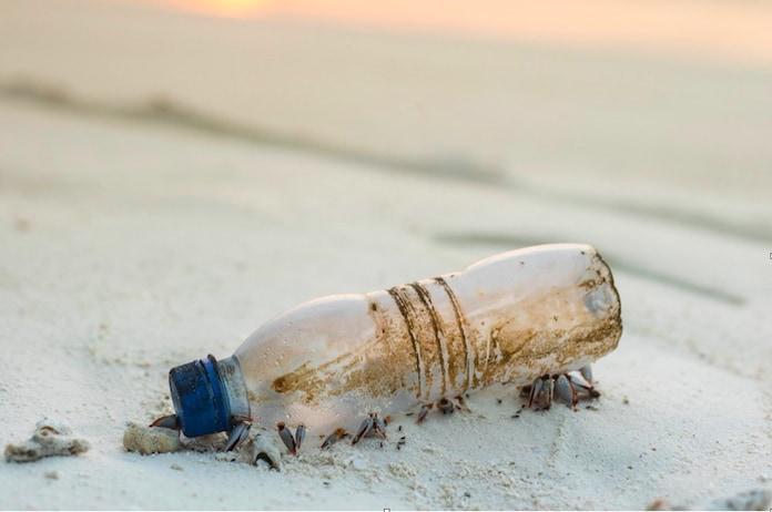 G20海洋プラスチック問題解決につながる日本企業の技術 飲める水作ることでプラごみ減少