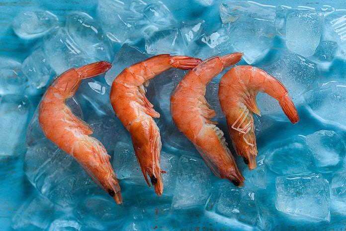 「エビフェス!海老の日祭りin豊洲」は海洋ゴミと食品ロス削減に向けたフードイベント